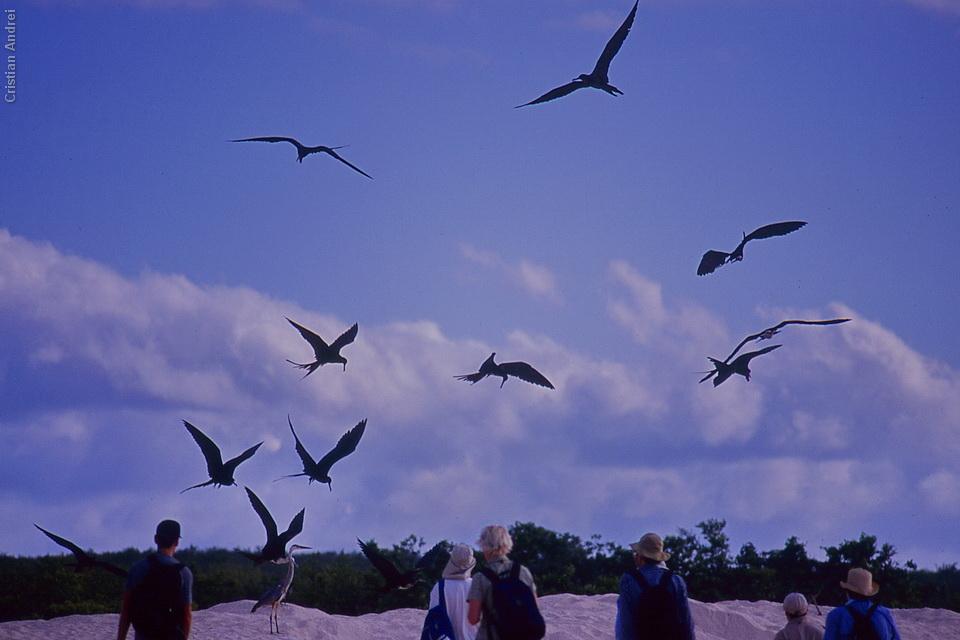 2001_Galapagos_CAN_01_cidadaos