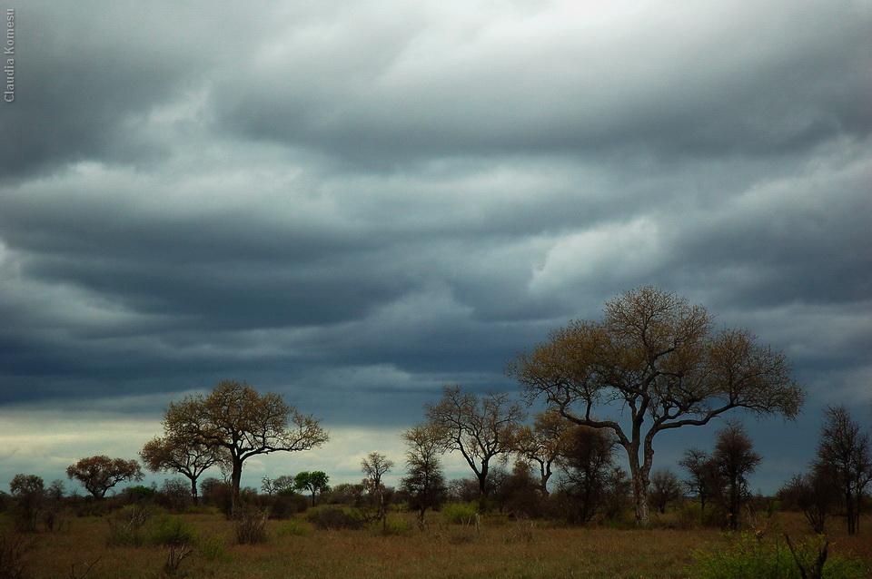 2007_Africa_CKO_19