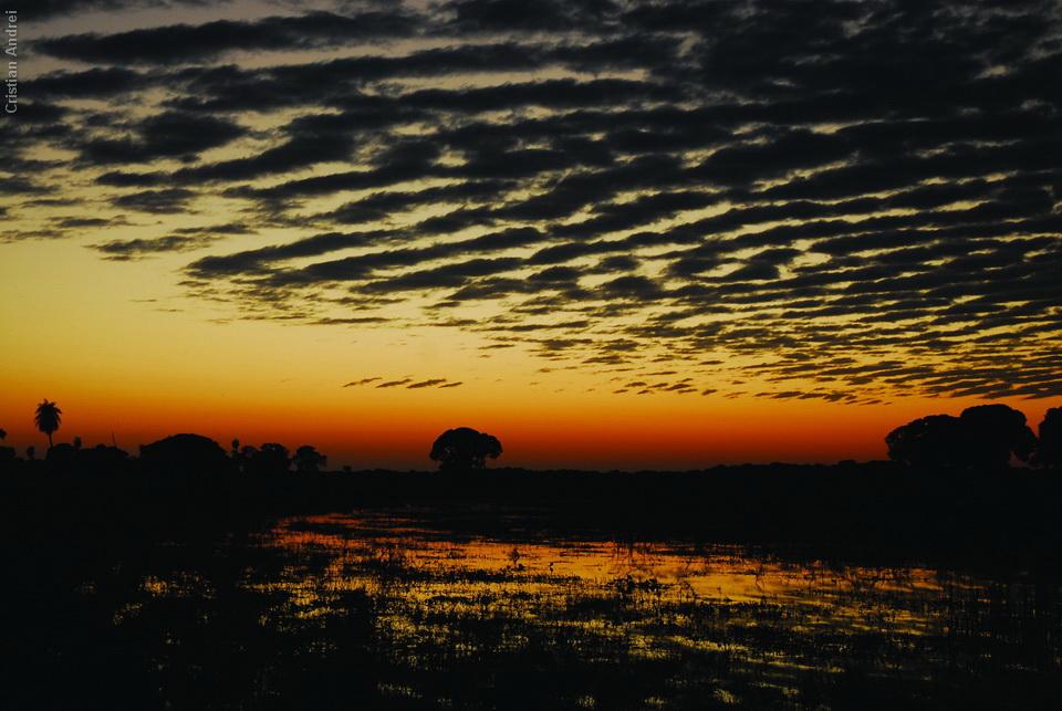 2008_Pantanal_CAN_01_onde