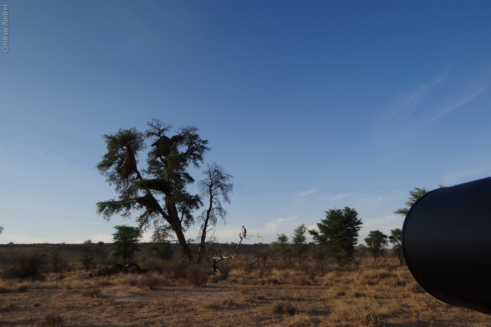 2011_Africa_CAN_71