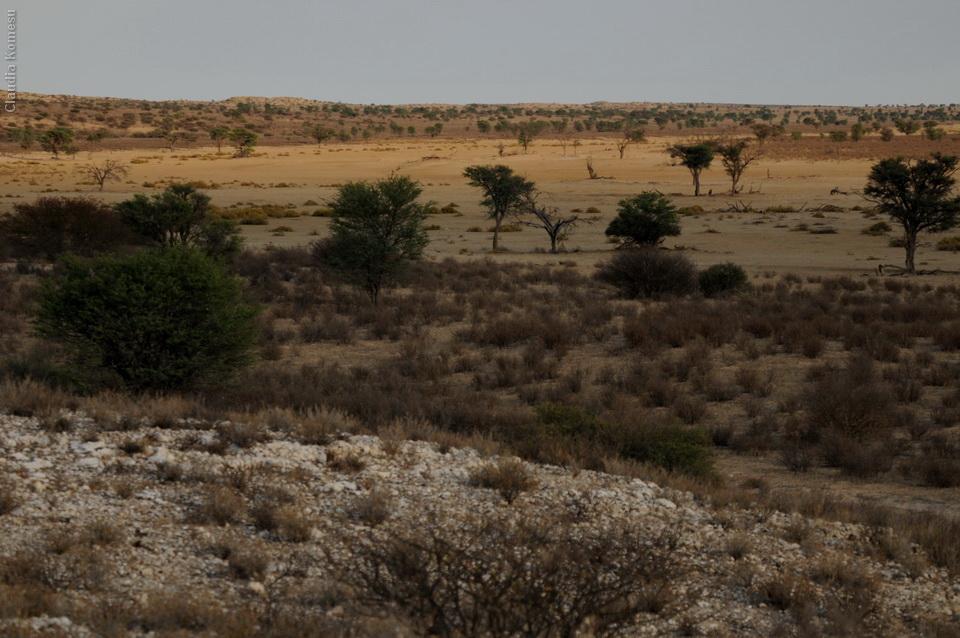 2011_Africa_CKO_77