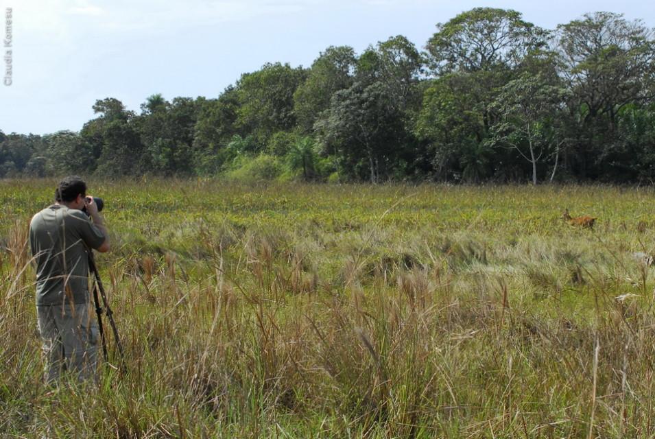 vg_pantanal-2008_37