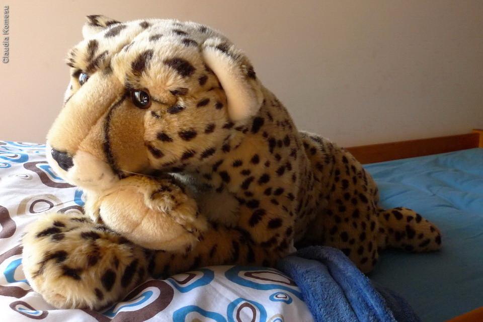 Pop na cama do Daniel