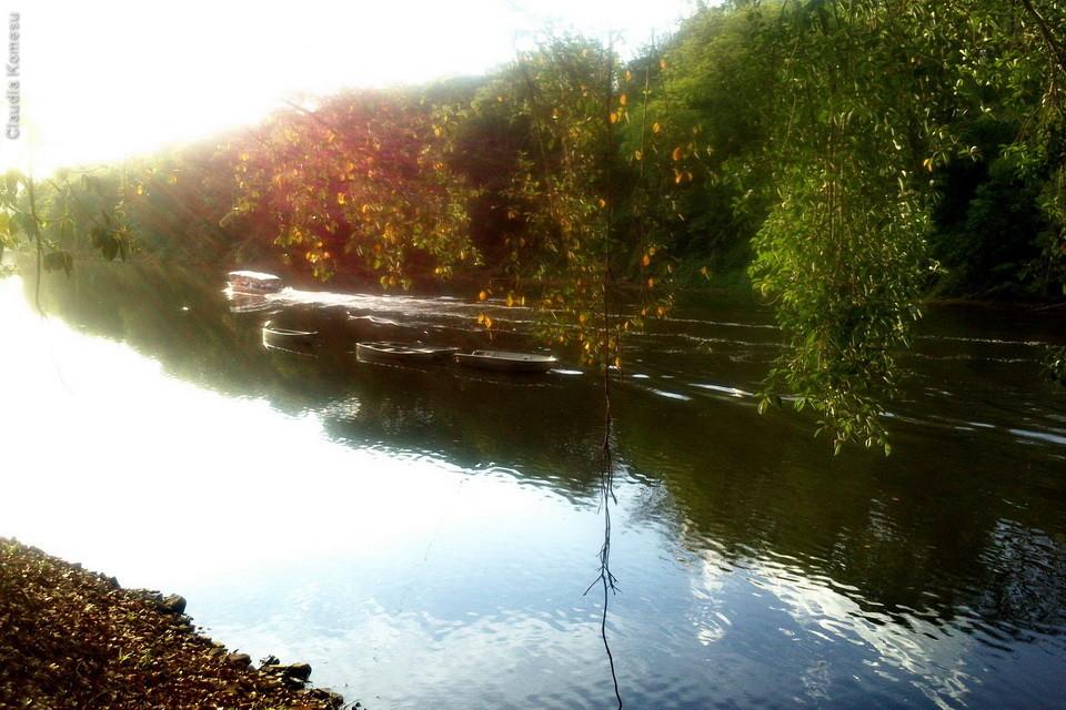 Um barco faz passeio pelo rio, mas acho que não dá aves