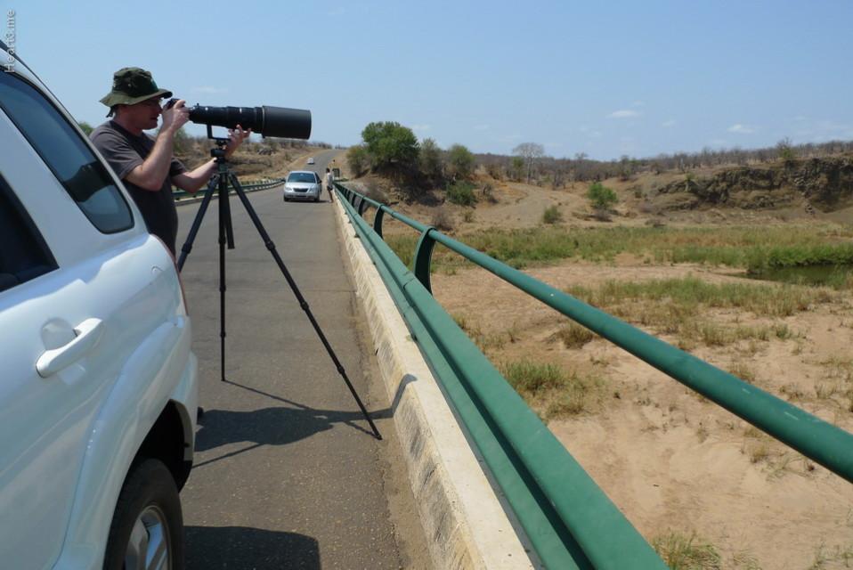 vg_africa_onde_21_Kruger2010