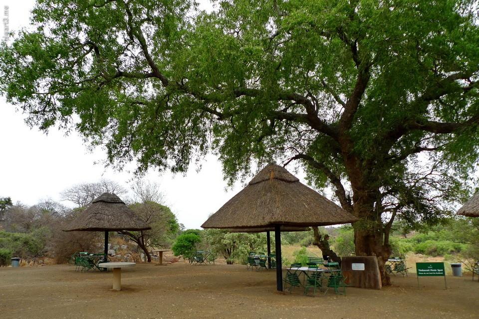 vg_africa_onde_24_Kruger2010 - área de piquenique, onde é permitido descer do carro