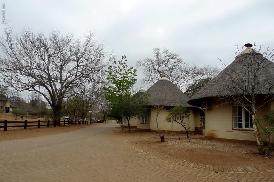 vg_africa_onde_25_Kruger2010 - Satara