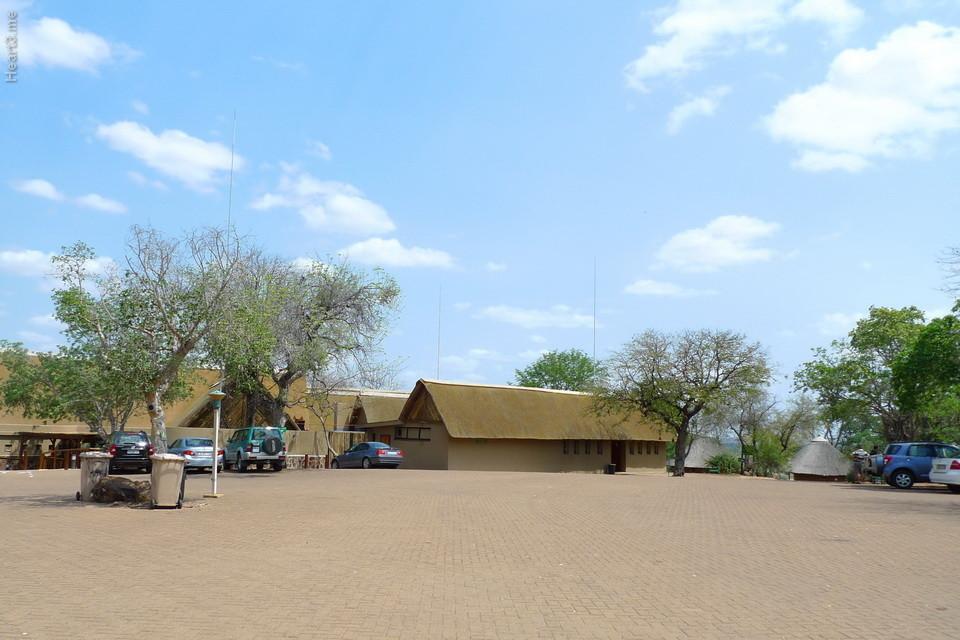 vg_africa_onde_28_Kruger2010 - Olifants