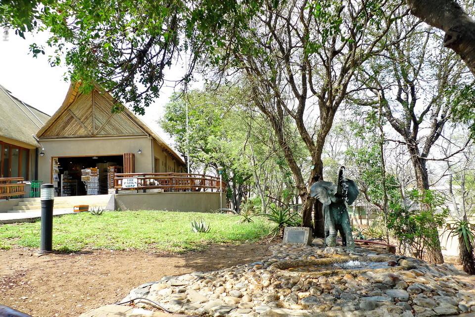 vg_africa_onde_31_Kruger2010 - Olifants