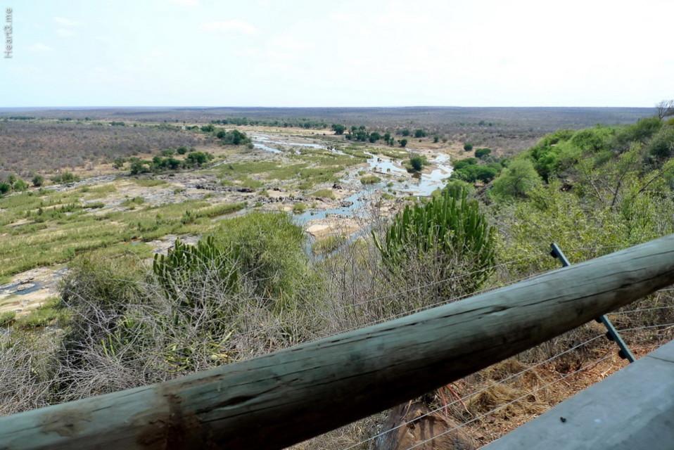 vg_africa_onde_32_Kruger2010 - Olifants