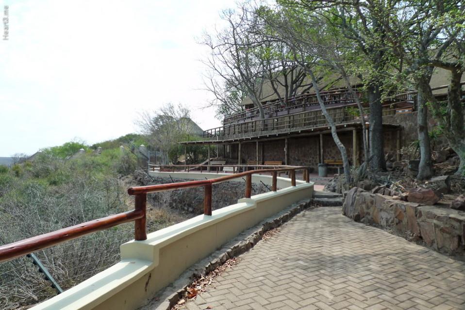 vg_africa_onde_33_Kruger2010 - Olifants