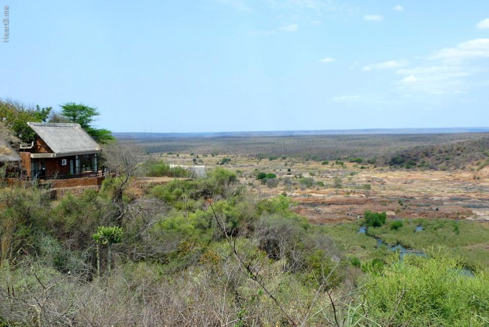 vg_africa_onde_34_Kruger2010 - Olifants
