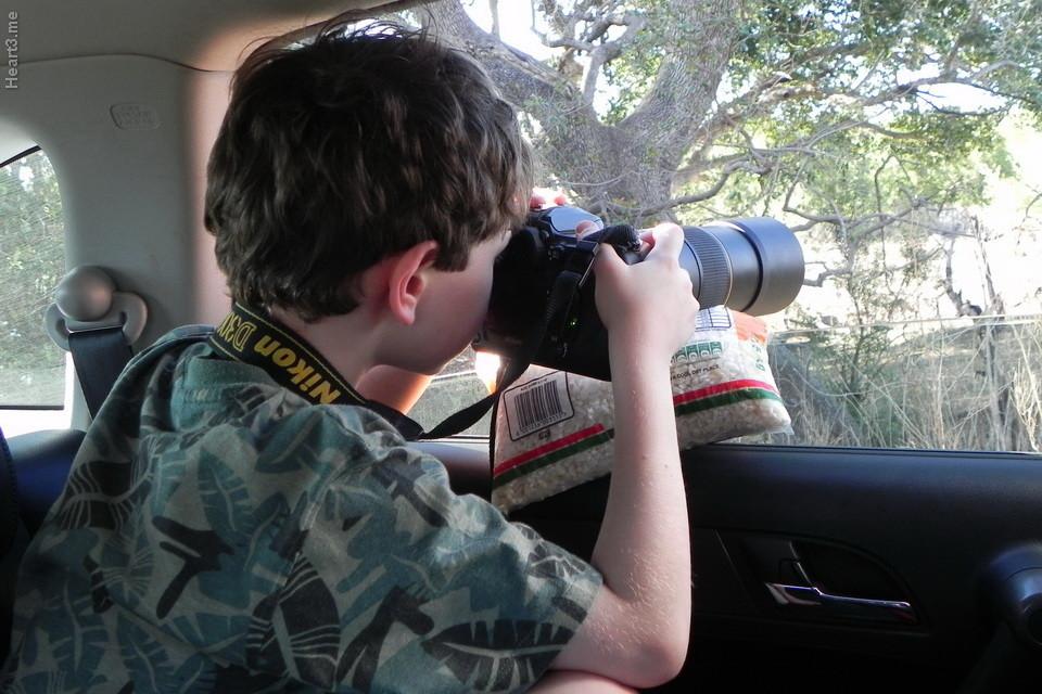 vg_africa_onde_53_Kruger2011