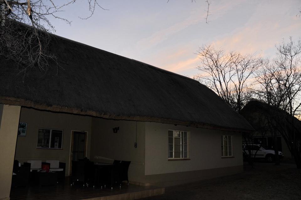 vg_africa_onde_54_Kruger2011 - Biyamiti