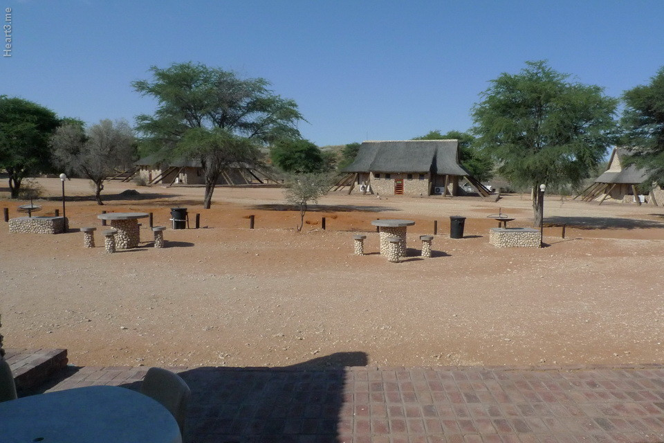 vg_africa_onde_61_Kgalagadi2011 - Twee Rivieren