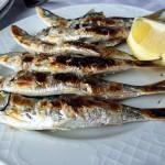 Bons peixes em Málaga
