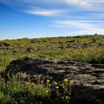 Rocky-Mountain-NP_28
