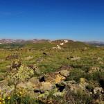 Rocky-Mountain-NP_33