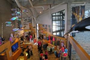 Monterey-Aquarium_07