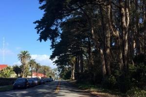 Presidio-NP_San-Francisco_35