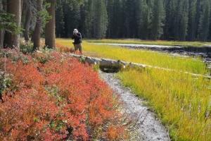 Yosemite_56