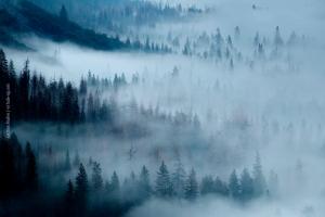 Yosemite_74
