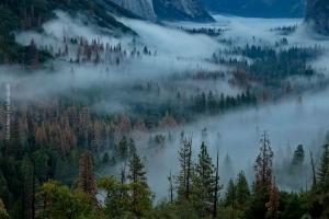 Yosemite_76