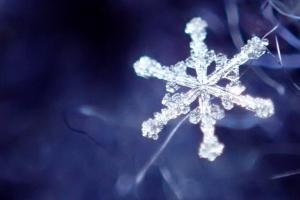 Snowflakes_04