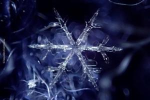 Snowflakes_08