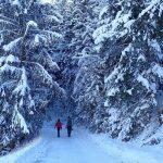 Primeiro contato com a neve, Áustria e Alemanha, dez/16