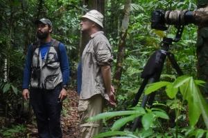 Amazonia_birding_nov2017_57