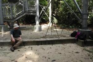 Amazonia_birding_nov2017_63
