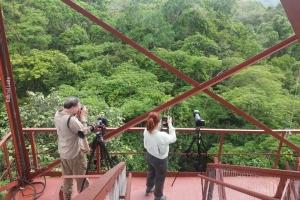 Amazonia_birding_nov2017_73