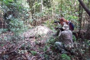 Amazonia_birding_nov2017_74