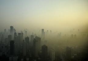 Álbum de fotos: Ásia